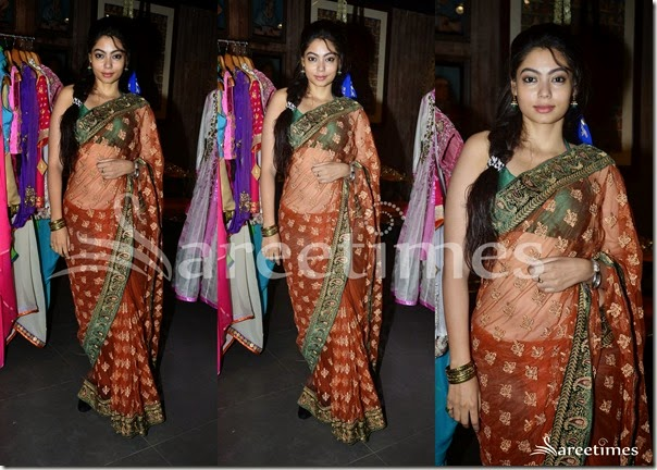 Brown_Embroidery_Net_Saree