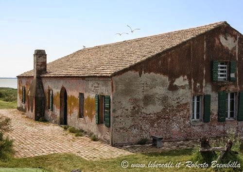11_2014-05-21_Valli di Comacchio_Delta Po (24)