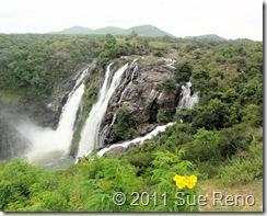 SueReno_Shivanasamudra Falls 1