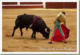 Toros_León-7