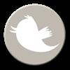 Twitter knop