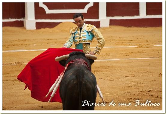 Toros_León-4