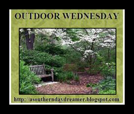 Outdoor-Wednesday-logo_thumb1_thumb1