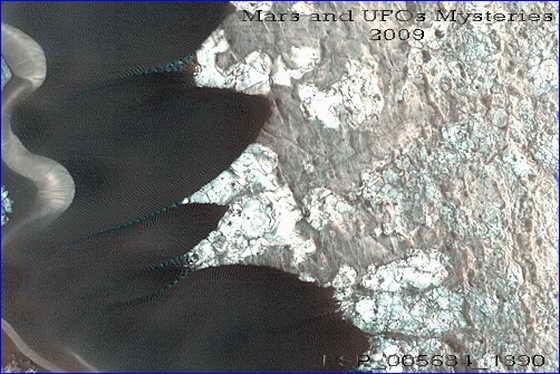 Anakonda and blue roots 560