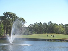 Florida Marriott Cypress Harbour golf area