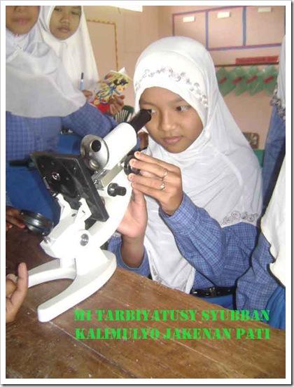 mikroskop-murid