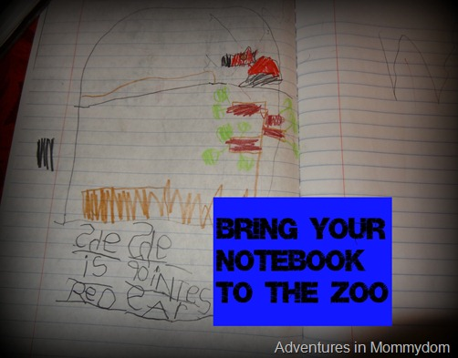 Bring your notebook to the zoo