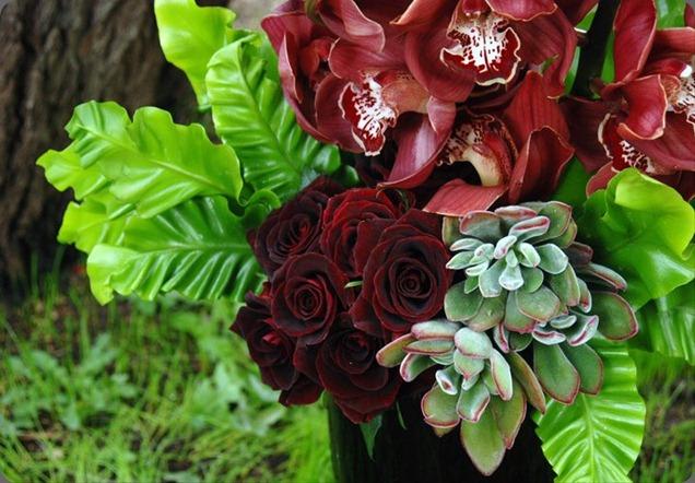 154615_180780805281174_159860124039909_618334_1972349_n  seed floral