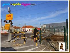 Blog013 Gazeta de Espinho
