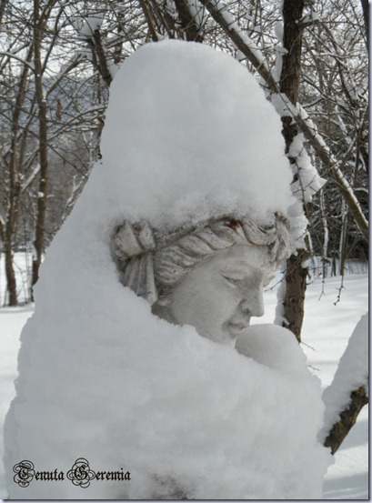 statua   roseto
