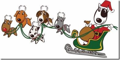 Doggie Adoption Extravaganza