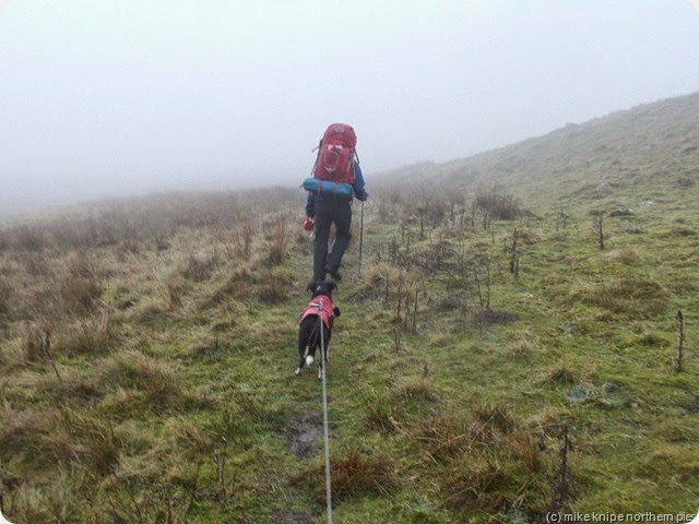 chrissie crossing crossthwaite common