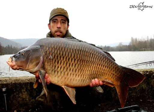 SchuppiEchternach18.5kg02