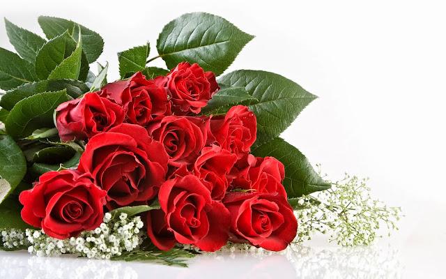 Wallpapers flower rose full hd todo imagenes - Flower wallpaper hd quality ...