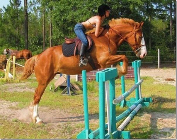 Mulheres e cavalos (52)