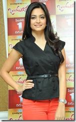 Actress Kriti Kharbanda at Ongole Gitta Press Meet Stills