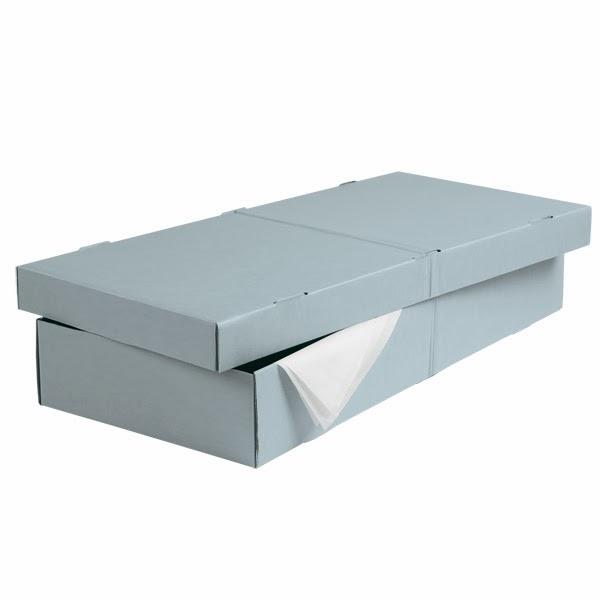 ArchiveStorageUnderbedBox_x Under Bed Storage