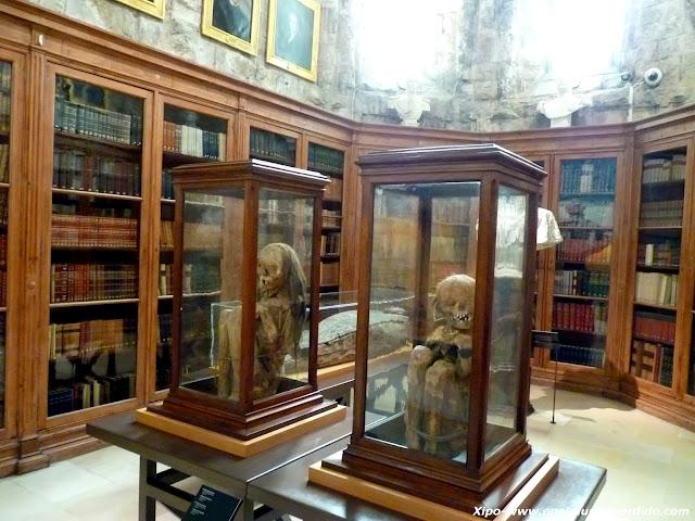 momias-museo-do-carmo-lisboa.JPG