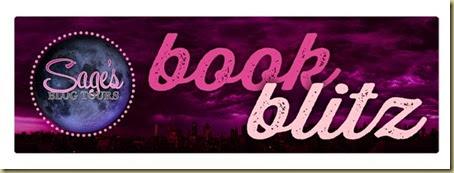 bookblitz banner
