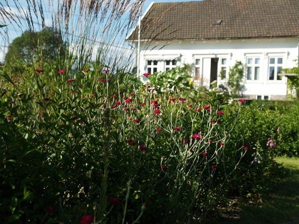 2012-08-05 Hagen på Møll (96)