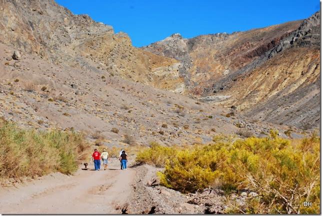 11-08-13 A DV 4x4 Titus Canyon Road (392)