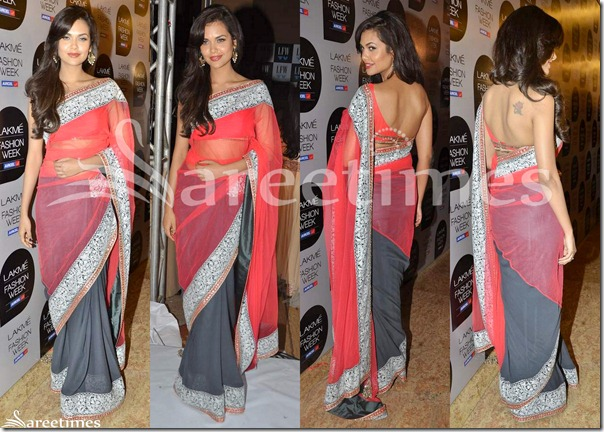 Esha_Gupta_Manish_Malhotra_Half_and_Half_Saree