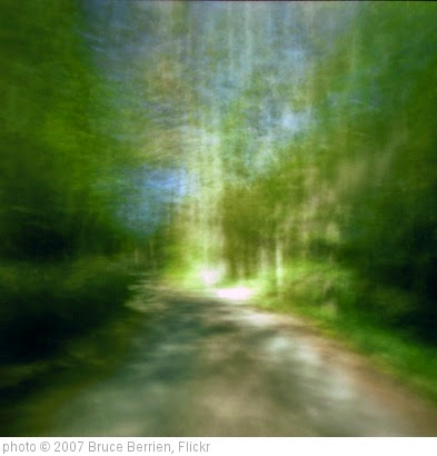 'Shining Path' photo (c) 2007, Bruce Berrien - license: https://creativecommons.org/licenses/by/2.0/