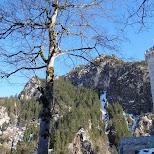 neuschwanstein castle in Füssen, Bayern, Germany