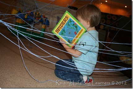 Reading About Spiders in the Web
