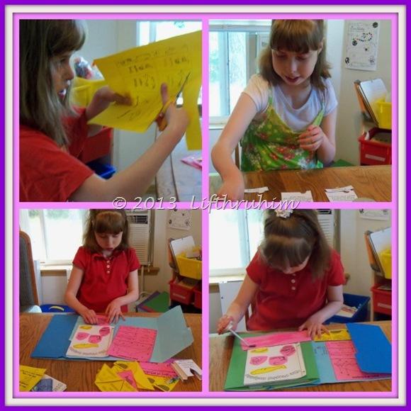 creating lapbook Collage