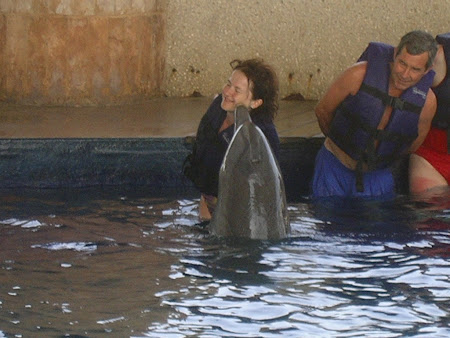Cancun travel: visit and play with the dolphins
