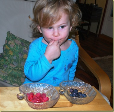 2012-01 Leander with Blueberries and Raspberries