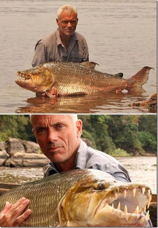 big-fish-fishing-34