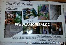 bm-image-799372 Adventkyrkan dinosaurier