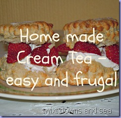 Cream tea easy and frugal from twixt downs and sea