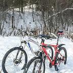 sneg2012-41.jpg