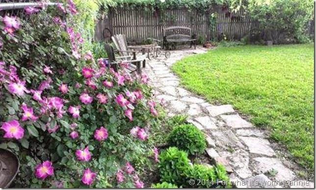 tc garden
