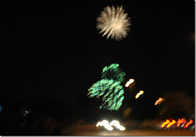July 4th 2012 030