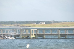 Cape Cod scene with dock