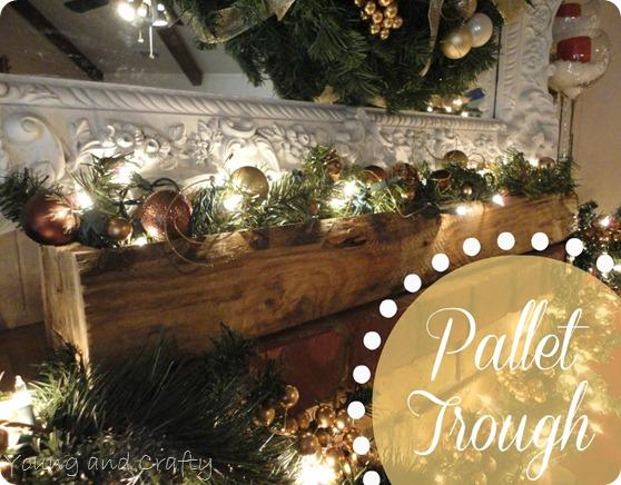 Pallet Trough