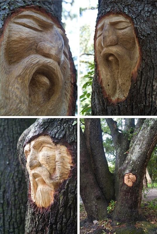 espírito árvore 06