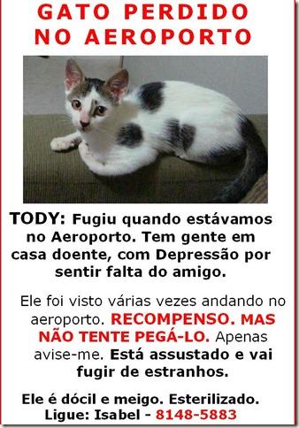 gato Toddy perdido no aeroporto salgado filho AJUDEM (1)