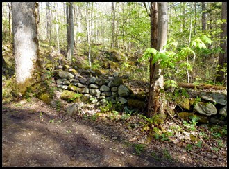 02d - old stone walls - remnants from the Elbert Cantrell farmstead, who settled here in the early 1900s