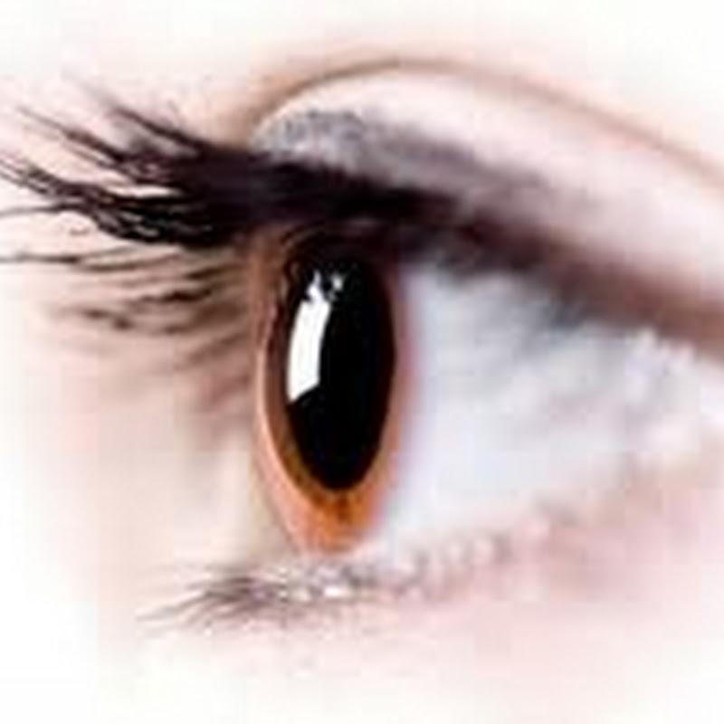 دقة عين الانسان بالميجا بيكسل بالمقارنة بالكاميرا