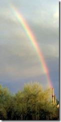Saguaro rainbow 1 7-15-2012 7-35-04 PM 1502x3063