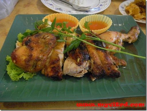 ayam golek 5