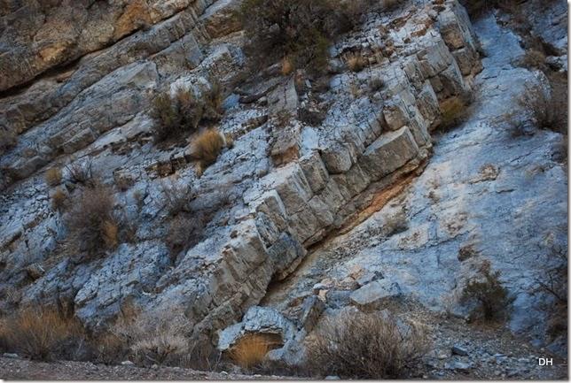 11-08-13 A DV 4x4 Titus Canyon Road (244)