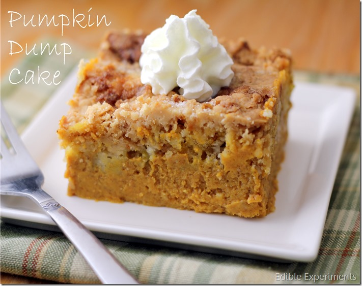 Pumpkin Dump Cake-best pumpkin dessert ever