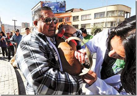 Rabia en Bolivia