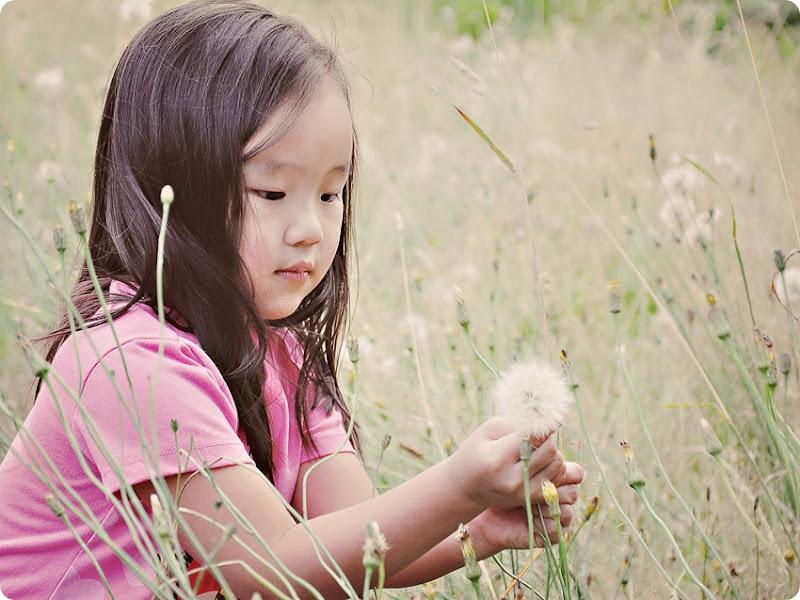 Zoe dandelions (1)